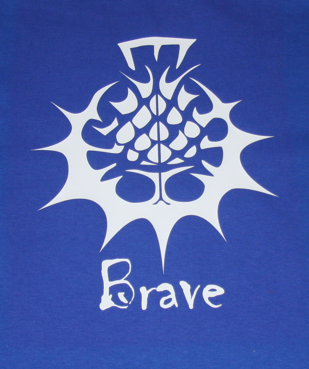 Brave T-Shirt - White on Blue